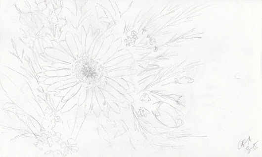 Daisy Sketch | Carolyn Almendarez Art