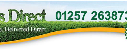 Hedges & Garden Hedging Plants Online - Hedges Direct UK