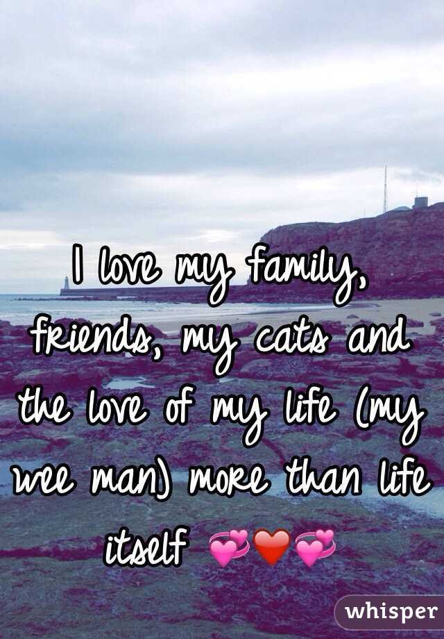 I Love My Family Friends My Cats And The Love Of My Life My Wee Man