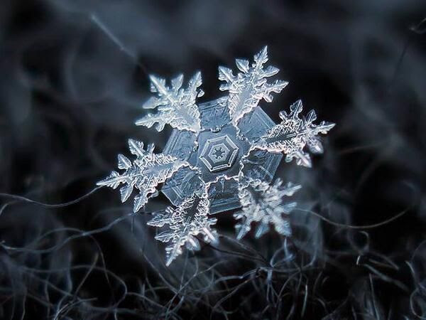 An up-close of a snowflake. Makes me think of Frozen.