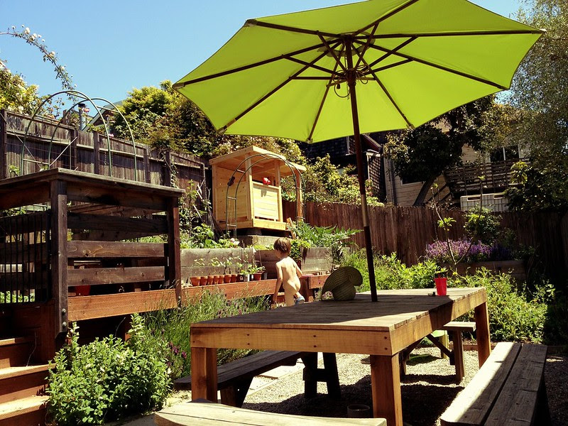 garden friday 05 11 12