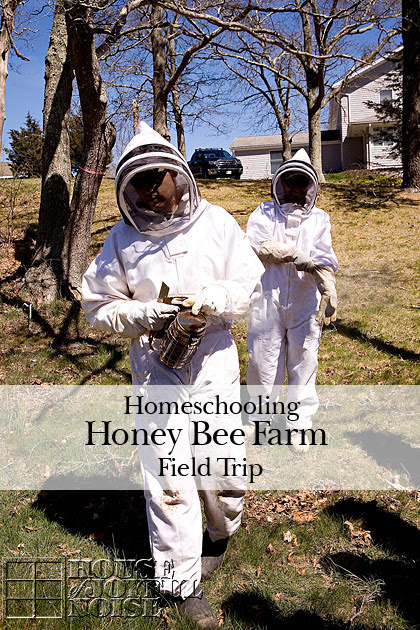 Honey Bees Farm - Field Trip |