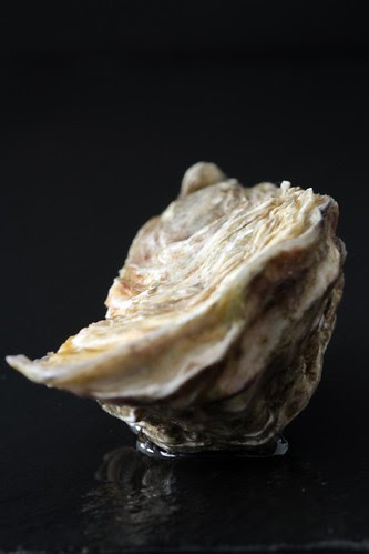 oester3