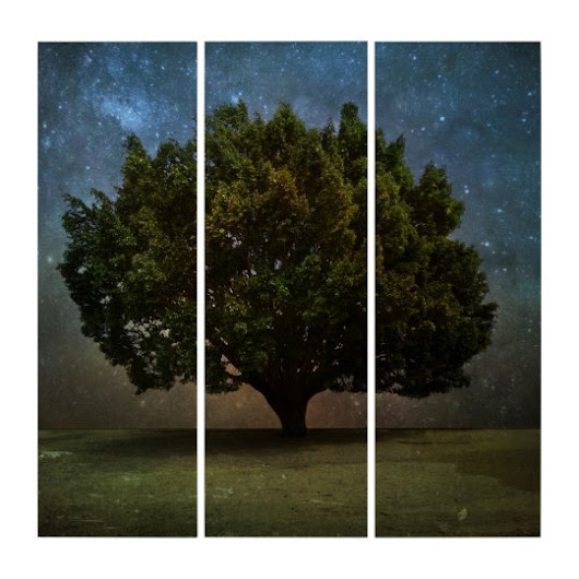 Tree under the Stars Triptych