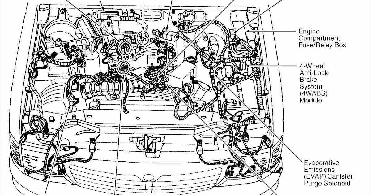 2001 Passat Wiring Diagram