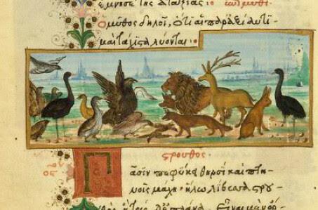 Struthiocamelus Perfidus