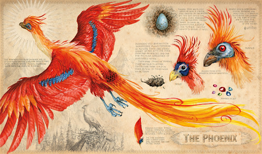 Harry Potter books - illustrated by Jim Kay - Ahomeround