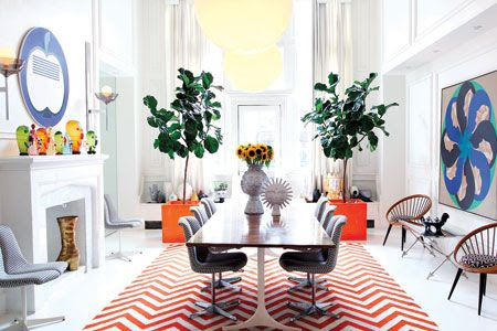 fiddle leaf fig tree, Jonathan Adler