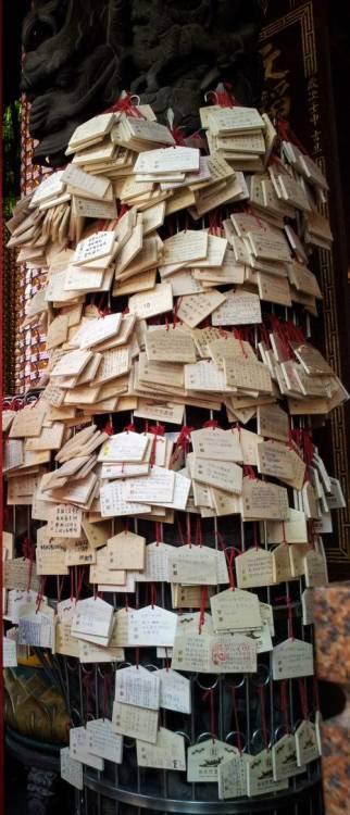 """Taipei: Test-taker wishes the success of the college entrance examination and hangs a small wooden prayer panel on the columns of the temple. (photo: Feb 17, 2013)台北:文昌宮の祈願札は試験間近で鈴なりに地下鉄雙連駅、青空市場の中央に位置している文昌宮は、このところ若者の姿が目に付く。受験シーズンです。こちら台湾でも検定試験、大学学科能力測験でまず自分の学力が測定される。そこでどこ辺りに挑戦するかの目安を図る。願書を11月に提出し、1月末から2月初めにかけて試験が実施されるらしい。大学の入試は国立、市立、私立でかなりばらばら。大体が三月初めから四月下旬までとのこと。丁度今が盛り。文昌宮前の公園、といっても地下鉄の上に設えられた線状公園、そこに受験生は一人で、友と、仲間たちと、親と、そして予備校の講師は生徒たちを引き連れ、それものぼりまで用意して集団で拝拝をする。大声を出して祈願の方法を説いている姿はユーモラスである。そして正門の脇の柱には祈願札が巻きつくことになる。門柱が傷つかないよう、祈願札が掛けられるよう、ちゃんとステンレスの柵がある。ここの文昌宮、台北では孔子廟・龍山寺と並び称される合格祈願の参拝拠点なんだそうだ。若者たち、がんばっておくんなさいな。参考までに以前掲載の記事と写真はこちら… (via """"a Cup of Asian-Tea 台北:何事も神頼み - 文昌宮の祈願札"""" Sunday, June 24, 2012)"""