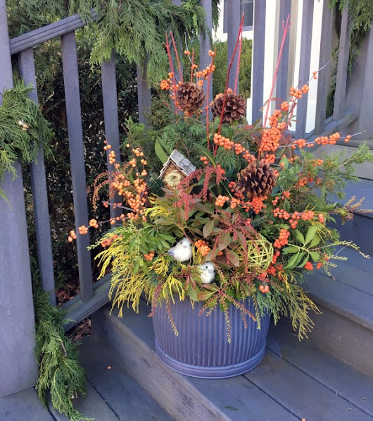 Design a Beautiful Bird-Friendly Winter Container Foraged from Your Yard - Garden Therapy