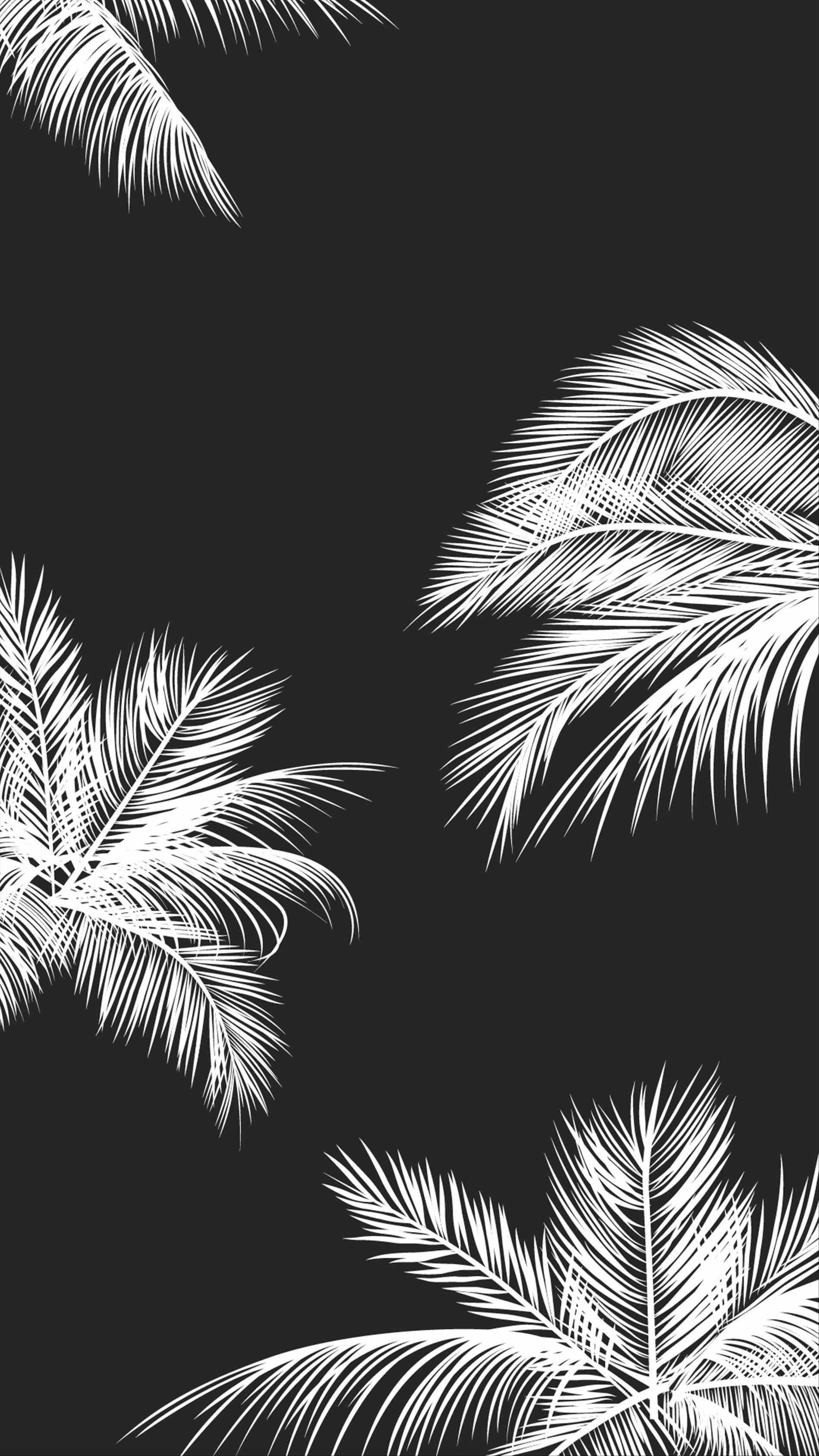 Aesthetic Black And White Edgy Wallpaper Tumblr Background Image George S Blog