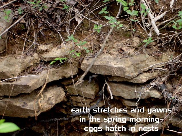 earthstretches_00