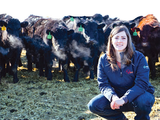 Are veterinary technicians ready to take on a larger role? - Canadian Cattlemen