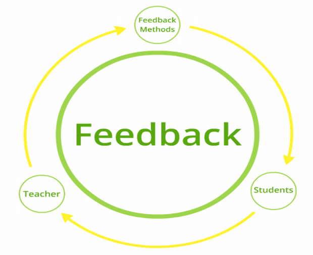 Feedback Factors
