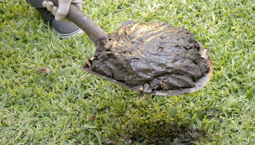 Poop In Garden Bed