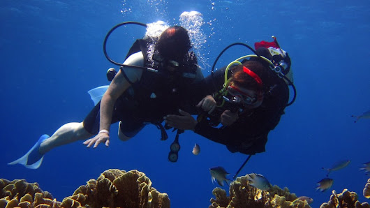 The scuba diver social network that could save your life