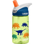 CamelBak Eddy Kids' Dinorama Bottle, 4L
