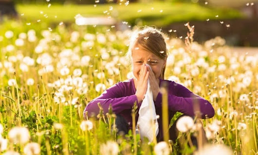 Islamabad sets up Pollen camps to fight seasonal allergy epidemic - Islamabad Scene