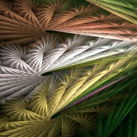 Fanned Feathers