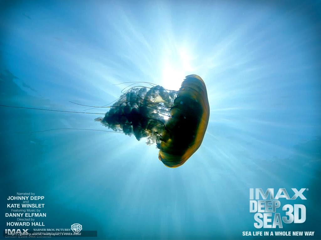 下载壁纸3d海底世界的秘密 深海 电影 电影免费为您的桌面分辨率的