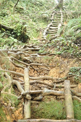 北插天山-第一個木梯
