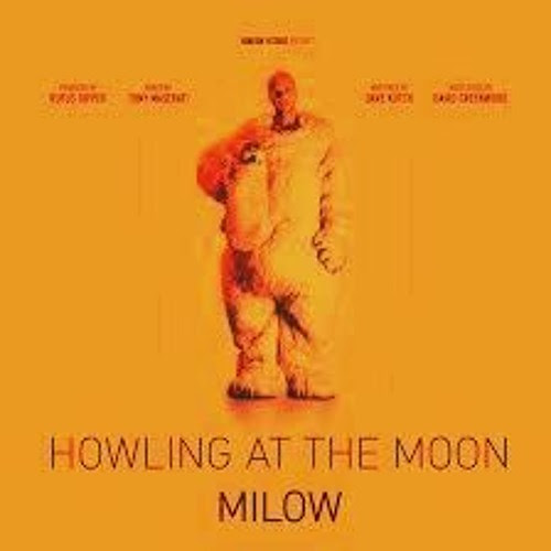 Milow - Howling At The Moon (Marcus Stabel Hinundweg Edit) by Sucram