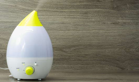 Home Ventilation: Whole House Humidifiers vs. Portable Humidifiers