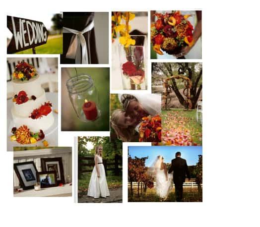 throughout reds oranges signs fall selected and fall flowers were  rustic vibrant fall