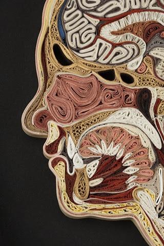 Doctor Ojiplatico. Lisa Nilsson. Tissue Series