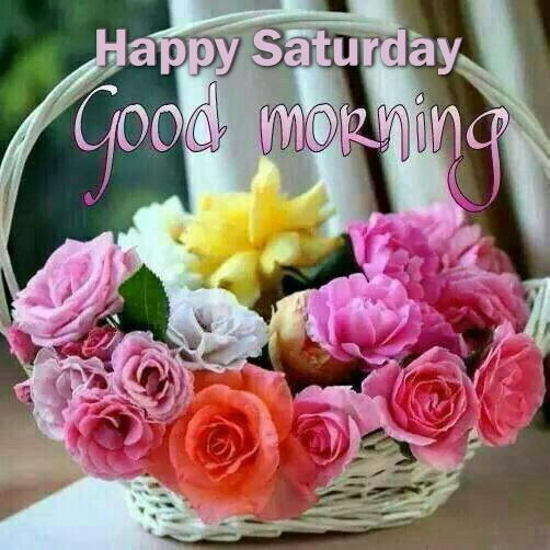 Happy Saturday Good Morning Flowers Pictures Photos And Images For