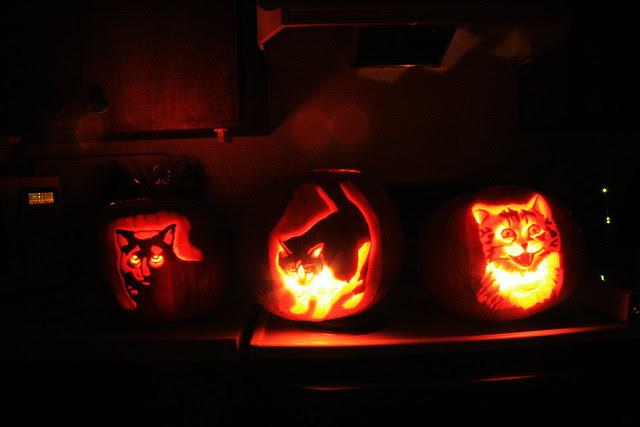 The Pumpkin Pride!