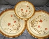 Mikasa Stoneware Jardiniere Discontinued Great, Whole Wheat Plates, Set of 3, Great - ChinaGalore