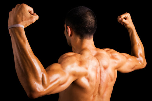 Build Broader Shoulders Fast With These Training Tips - Supplement Market Ratings and Reviews