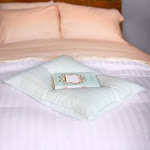 Downlite Extra Soft Cotton Damask Down Alternative Stomach Sleeper Pillow - Blue Queen