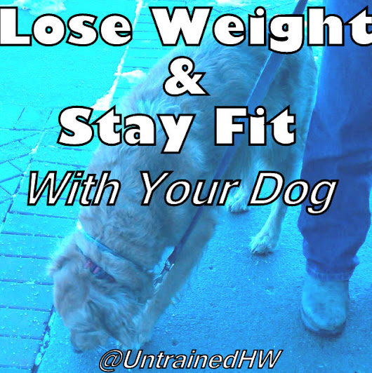 Lose Weight and Stay Fit with Your Dog