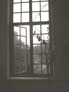window indicating despair alcoholism