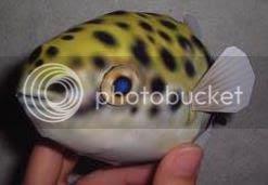 photo puffer fish papercraft via papermau 03a_zpsqw2eibyc.jpg