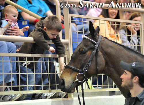 Suave Jazz and young fans at the PA Horse World Expo