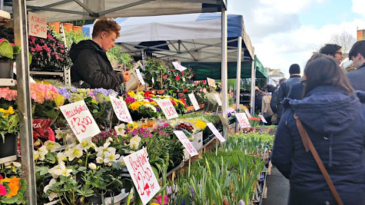 Spring is in the Air at Columbia Road Flower Market