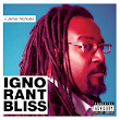 Ignorant Bliss 59: A Conversation with cartoonist Jamar Nicholas | Ignorant Bliss