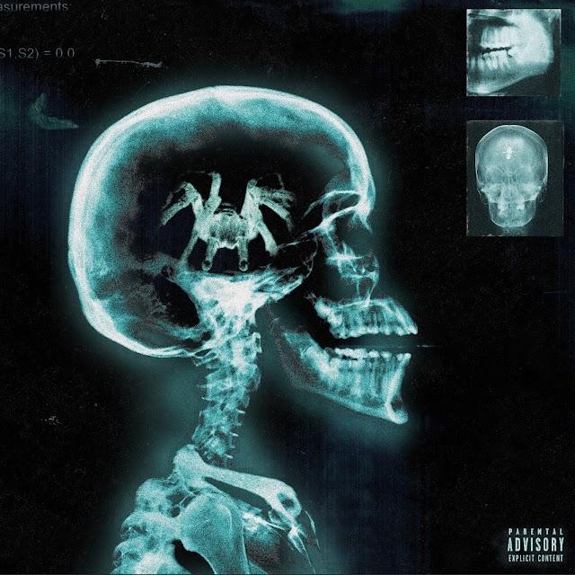 Danny Towers - Tarantula (Album) [iTunes Plus AAC M4A]