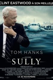 background picture for movie Sully