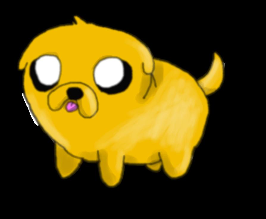 Jake cachorrito