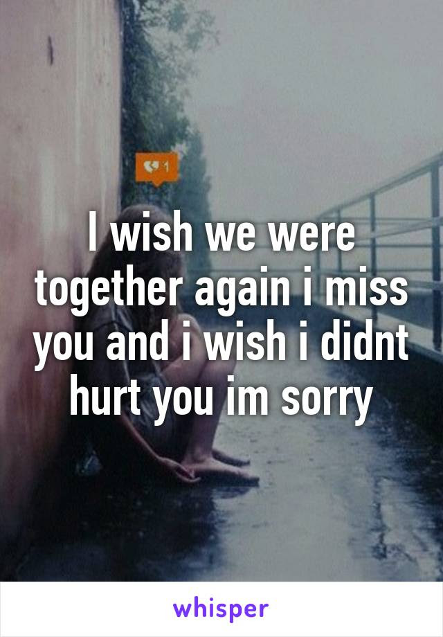 I Wish We Were Together Again I Miss You And I Wish I Didnt Hurt You Im
