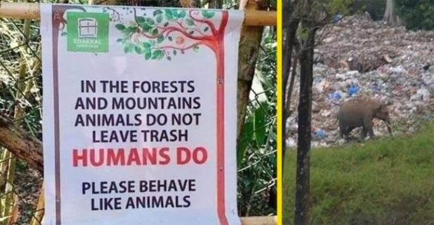 Anand Mahindra Shares A Unique Signboard 'Behave Like Animals' Picture