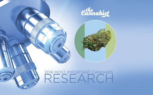 Year in weed: The five most important medical marijuana research studies of 2016