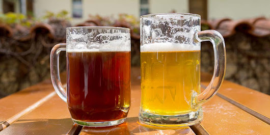 Ale vs. Lager: The Differences Between Both Types of Beer