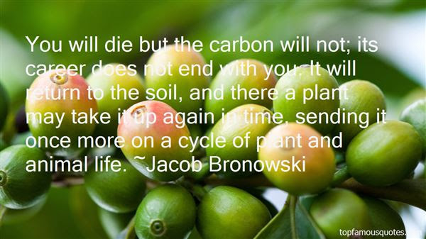Cycle Of Life Quotes Best 38 Famous Quotes About Cycle Of Life