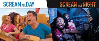 SCREAM ALL DAY | SCREAM ALL NIGHT