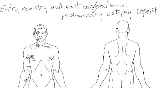 Autopsy Shows Michael Brown Was Struck at Least 6 Times - NYTimes.com